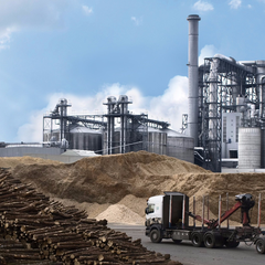 Wood processing plants